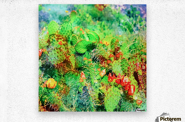 green cactus with yellow and red flower in the desert  Metal print