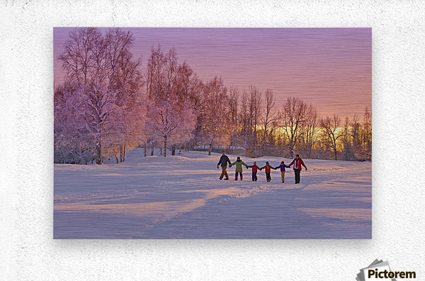 Family Group, Holding Hands, Walk On A Snow Path At Sunset With A Birch Forest In The Background, Russian Jack Springs Park, Anchorage, Southcentral Alaska, Winter  Metal print