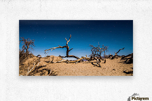 Death Valley Night  Metal print