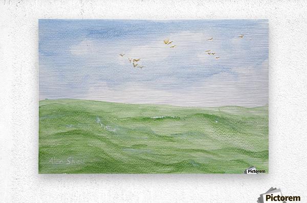 Birds over the ocean.  Metal print