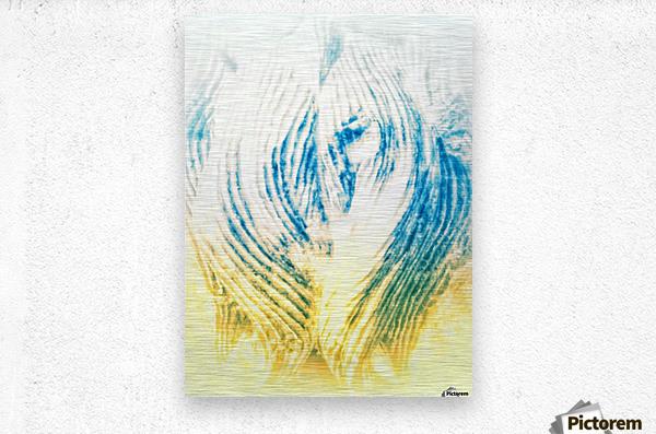 IMG_20170928_151706 01 01 02 01 02 011  Metal print