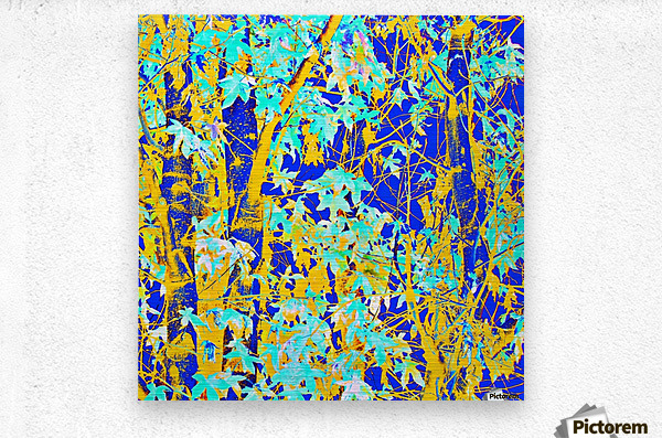 green maple tree leaf with blue and yellow abstract background  Metal print