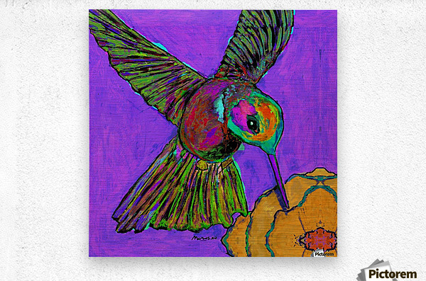 HUMMINGBIRD ON PURPLE  Metal print