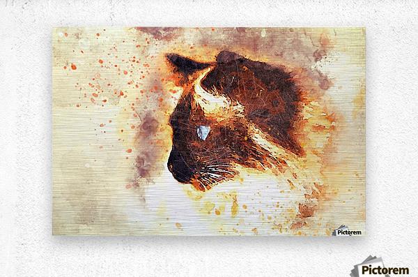 cat 2719594  Metal print