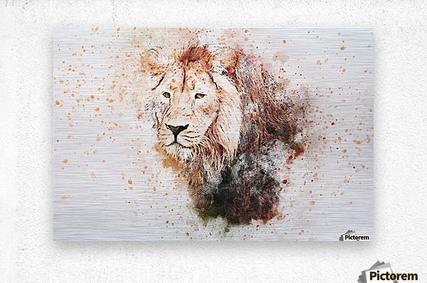 lionss  Metal print