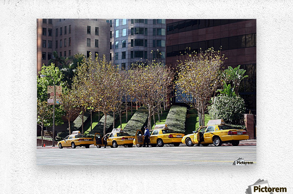 Four Taxis Four Trees  Metal print