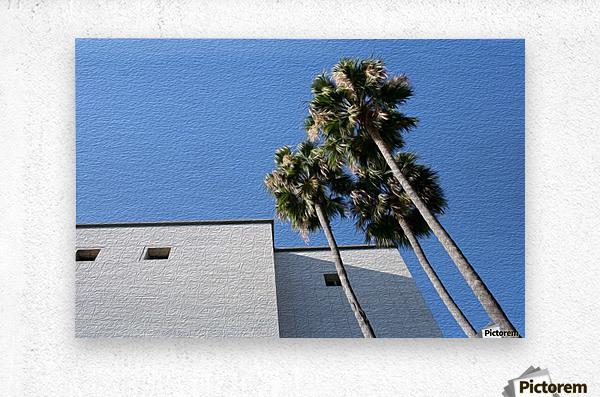 3 Palm Trees Next to Building  Metal print