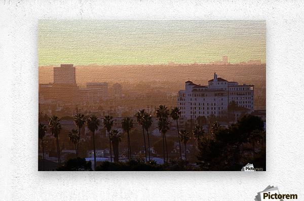 Southern California Sunshine  Metal print