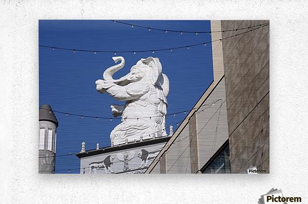 Hollywood Dancing Elephant  Metal print
