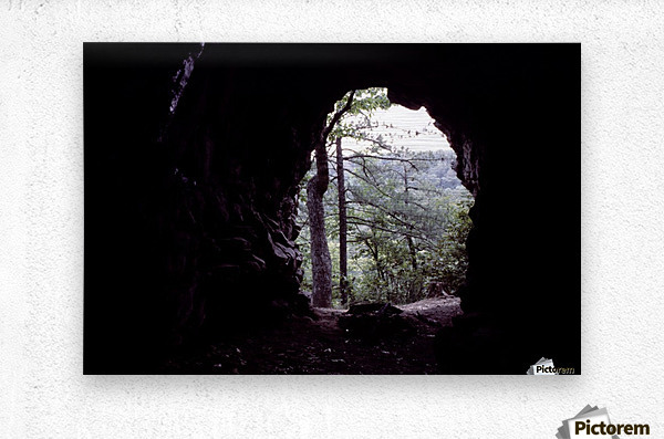 Forest Cave  Metal print