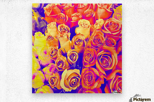 bouquet of roses texture pattern abstract in pink and white  Metal print