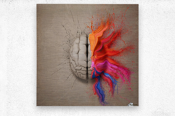 The Creative Brain  Metal print