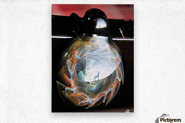 ReflectionInGlassF002  Metal print