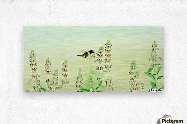 The Hummingbird  Metal print