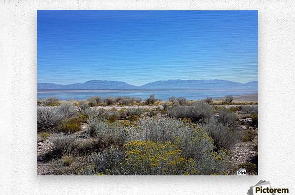Salt Lake Vista  Metal print