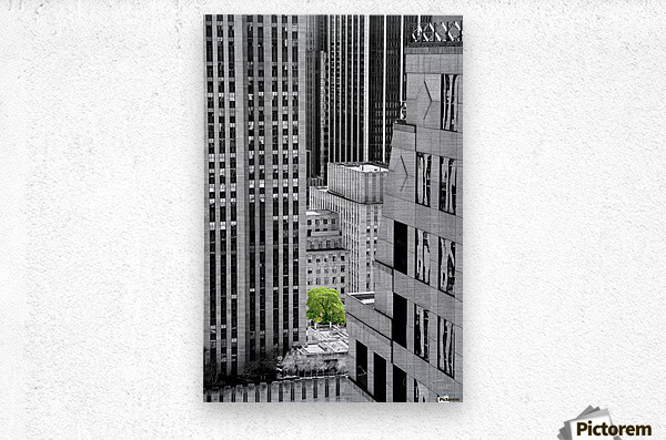 Forêt urbaine  Metal print
