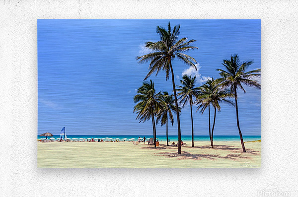 vacation on the beach on the hot Caribbean islands with green palms, yellow sand, blue sky  Metal print