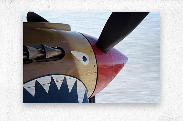 P-40 Warhawk Nose  Metal print
