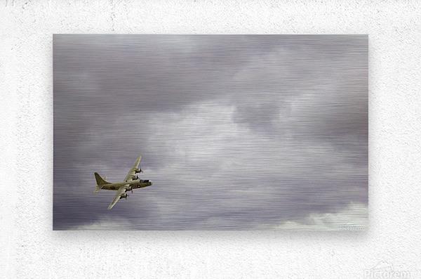 Flyingwarbird  Metal print