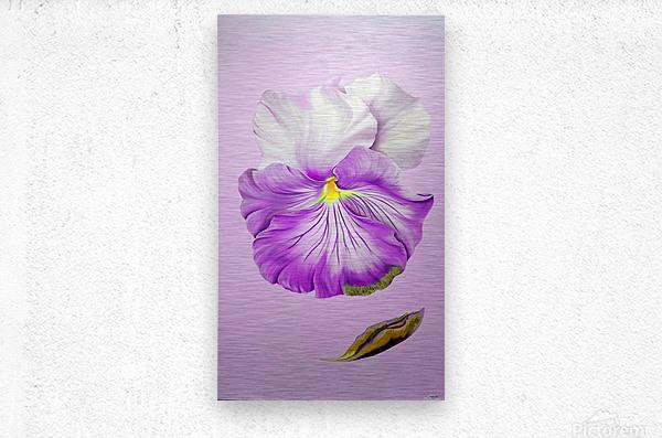 Purple Pansy  Metal print