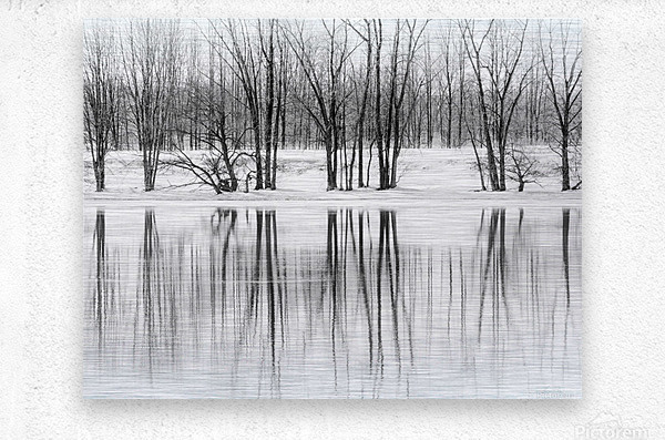 Reflexion  Metal print