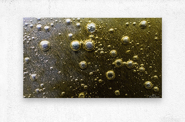 Gold Rush - Ruee vers l Or  Metal print