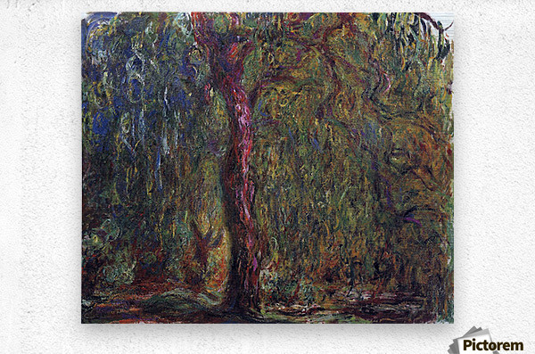 Weeping willow by Monet  Metal print