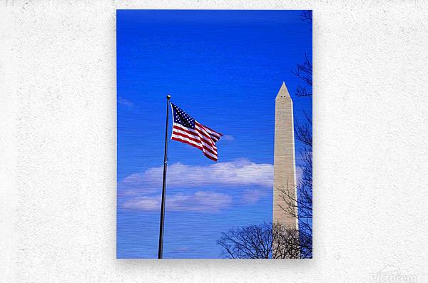 Flag & Washington Monument  Metal print