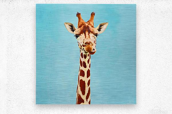 Giraff  Metal print