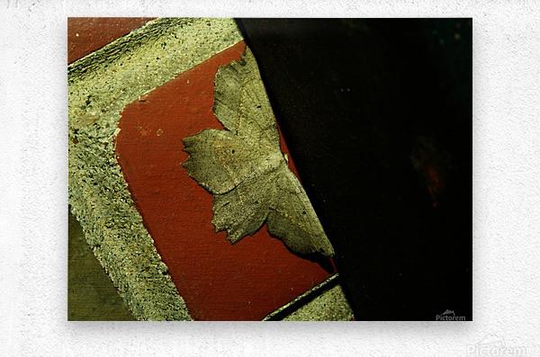 C (3)  Metal print
