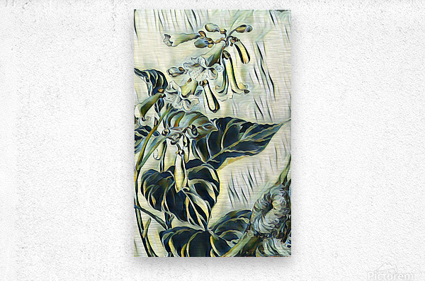 Flower_Lily  Metal print
