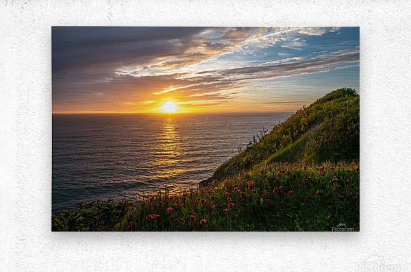 Glorious Light  Metal print