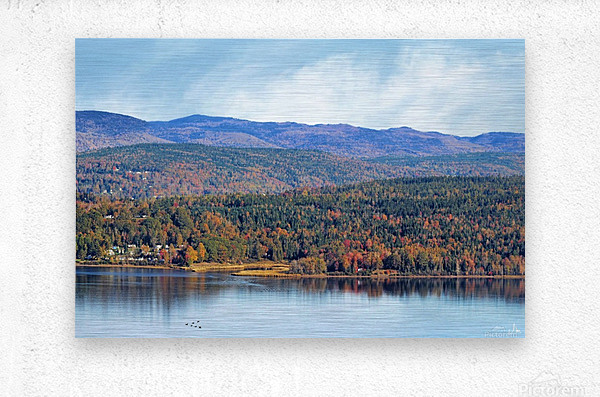 Grand Bay Westfield Split Canvas panel 4 at 24 x 16  Metal print