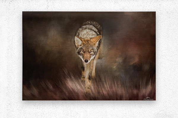 Out of the Shadows  Metal print