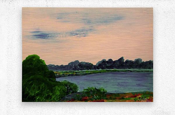 Evening Landscape  Metal print