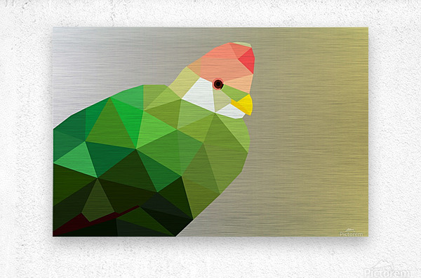 RED CRESTED TURACO LOW POLY ART  Metal print