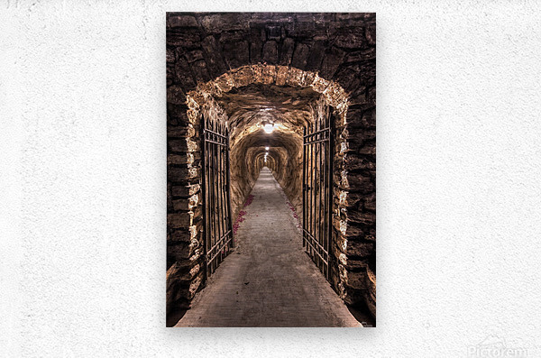 old tunnel  Metal print