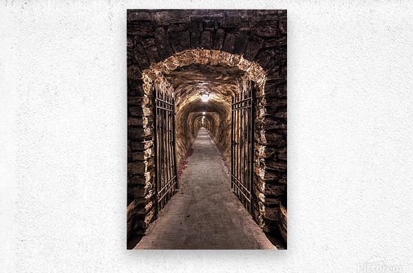 old tunnel  Metal print