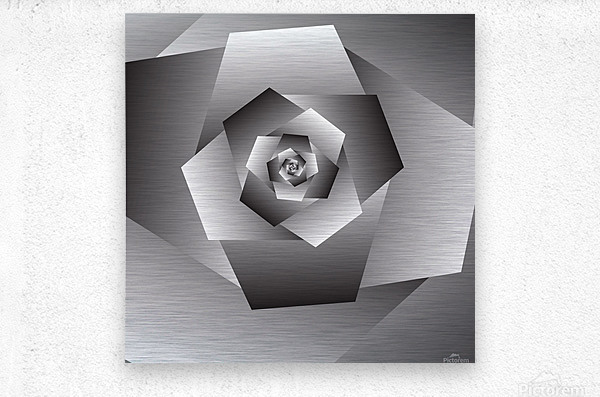 Monochrome Rose Art  Metal print