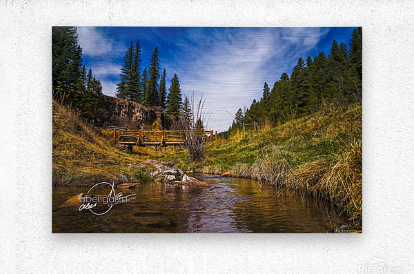 BluffSprings  Metal print
