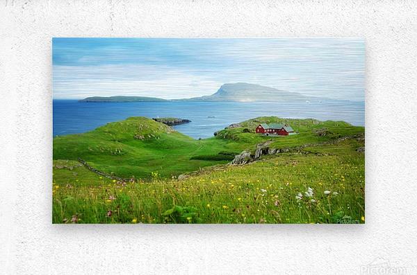 Faroe green field  Metal print