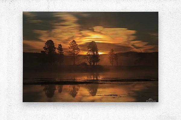 Northern Lights in Yellowstone  Metal print
