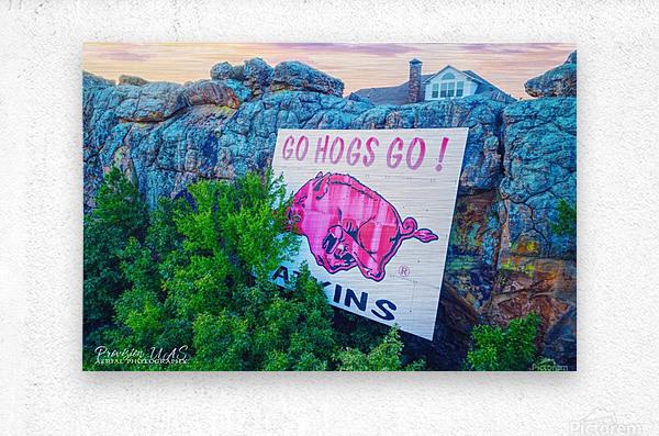 Atkins AR | Go Hogs Go  Metal print