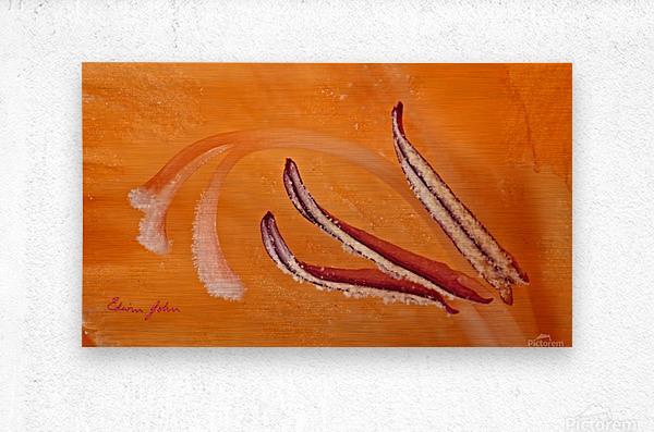 Orange Gladiola Ultra Close Up of Stamens  Metal print