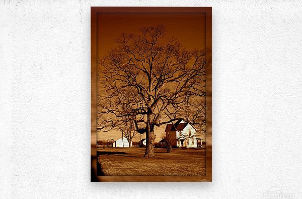 Magnificent Tree  Impression metal