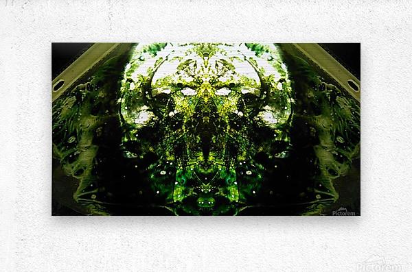 1538540107642  Metal print