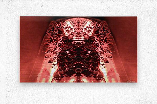 1538532240488  Metal print