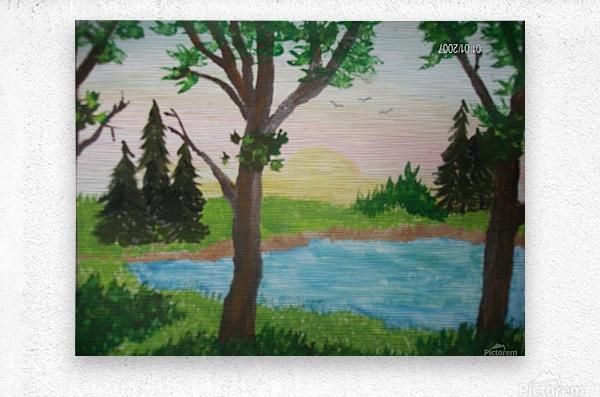 Sunset over the pond  Metal print
