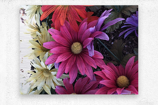Rainbow of flowers  Metal print