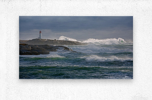 In the Protection of a Lighthouse  Metal print